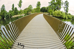 Kew Walk Bridge (Muzammil (Moz)) Tags: uk kewgardens london beautiful richmond fisheye moz royalbotanicalgardens