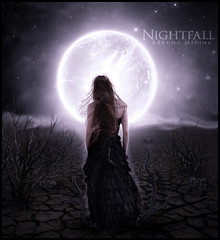 Nightfall . ( Bruno Medina) Tags: art photomanipulation photoshop dark 4 painter noite efeitos caveira anoitecer nightfall essentials corel tentculos reconstruo arbustros