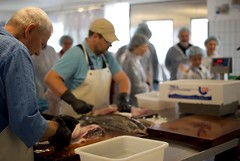 very experienced fish filleters in strandby, denmark (MatiasSingers) Tags: fish denmark salmon salmonfillet frederikshavn fillet fishingvessel fishfillet strandby fishfilleting fishdenmark fishfilleter salmonfilleting salsomdenmark strandydenmark