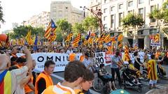 Manifestació 10J
