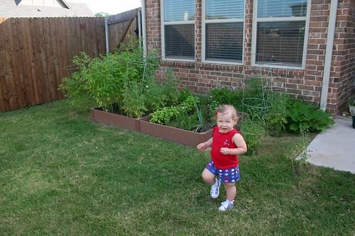 Garden @ 12 Weeks
