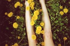 (heddaselder) Tags: flower feet field yellow clouds analog shoes legs air may dandelion uppsala 2010 analouge