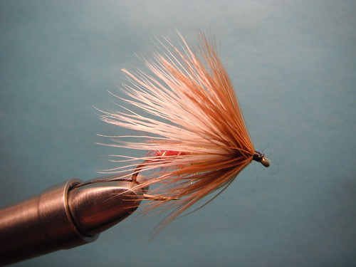 Hair Wing Sea Run Cutthroat Fly