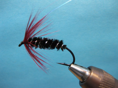 Classic Summer Steelhead Series Claret and Black