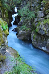 Avalanche Creek (Jayesh Modha) Tags: longexposure waterfall glacier glaciernationalpark runningwater avalanchegorge jayesh avalanchecreek 18105mmf3556gvr glaciernationalparkusa trailsofthecedars jayeshnikond90
