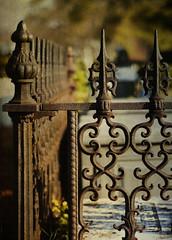 Springwood Iron Fence Painterly Texture