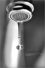 A drop is enough to make you alive (Abdulla Attamimi Photos [@AbdullaAmm]) Tags: photography photo nikon photos live drop photographic alive 2008 highspeed 2010  washbasin abdulla abdullah amm   d90    tamimi    attamimi   desamm abdullahamm abdullaamm altamimialtamimi    abdullaammnet abdullaammcom