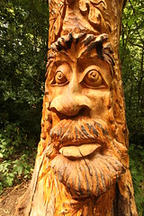 Old Man Of The Tree (Kam Sanghera) Tags: lesnes abbey woods wood se2 tree carving face canon ef 20mm f28 usm london eos 5d mark ii ef20mm