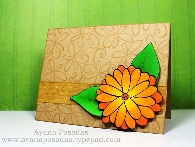 JudysBloom Orange (2)