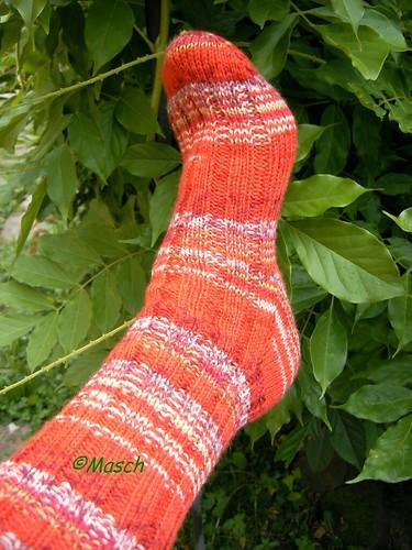 Fabel Socken 003