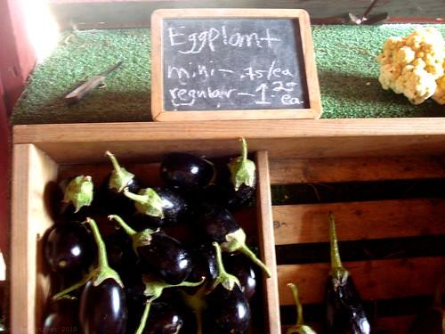 makes me wish I liked eggplant