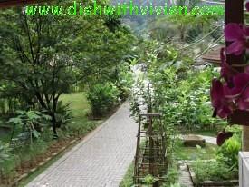 Bayan-Indah-walkway