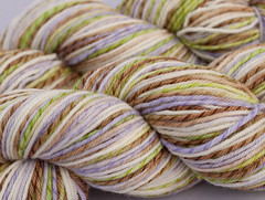 Hosanna on Licorice Twist Merino Wool- 4 oz (...a time to dye)