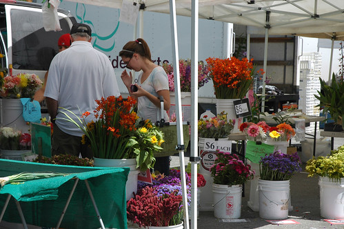 Saratoga Farmers Market - August