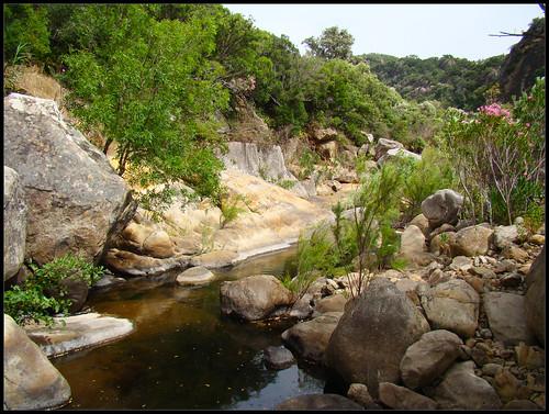 Arroyo de la Garganta del Espino (4)