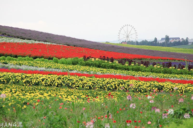 かんのファーム(菅野農場)