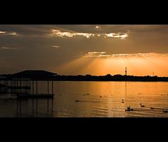 Goodbye (Jagdey) Tags: sunset lake reflection arlington landscape ducks rays