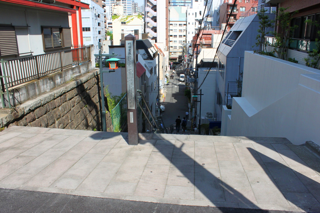 The art of the walk for gastronome in Kanda (47)