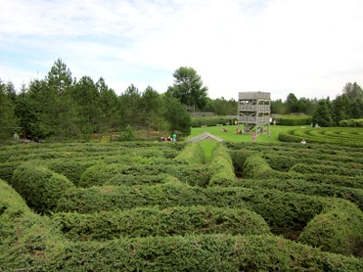 From the center of the Mile Maze
