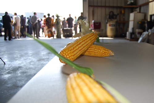 Corn and Ministers; The ministers learned about the Waters' corn and soybean operations.