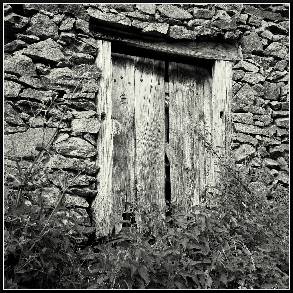 Rustic Images (1)