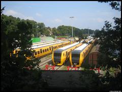 Mottenballen (2) (Rinse Bunnik) Tags: berg train tren arnhem reserve trein spoorwegen nederlandse verkeerde terzijde dm90 koude marktwerking opstelterrein mottenballen gesteld