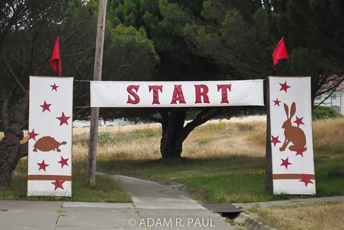 Start gate