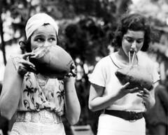 Anglų lietuvių žodynas. Žodis coconut milk reiškia kokoso pienas lietuviškai.