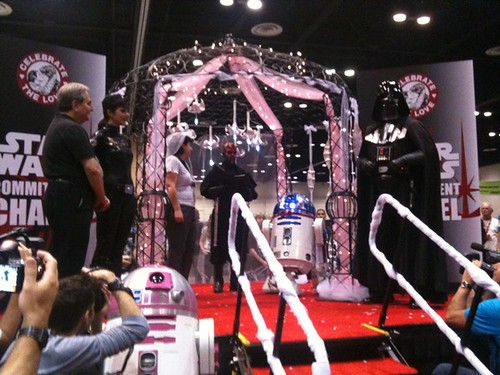 Celebration V: My Droid Wedding