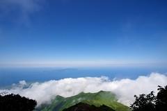 礼文島を見下ろす