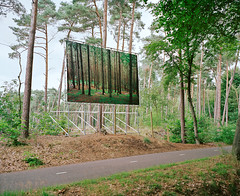 (Gebhart de Koekkoek) Tags: trees holland film nature netherlands forest landscape fotografie exhibition 6x7 elders ausstellung mamiya7 elderslandschap