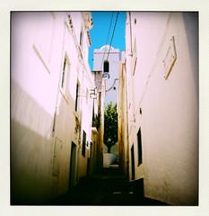 carrer-pola