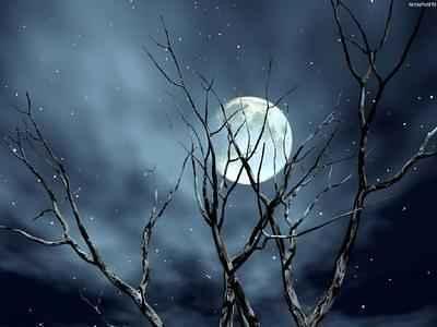 luar, lua, noite, lua cheia