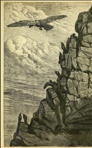 Aquila et Corvus