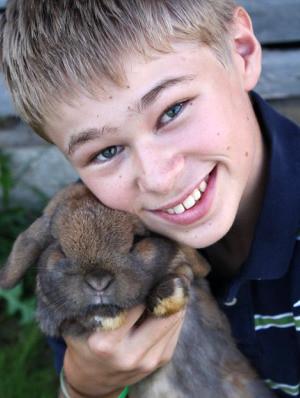 rabbit and boy 3