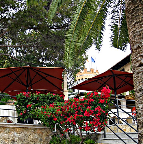 El entorno del Castillo Hotel