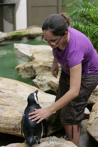 Libby & penguins