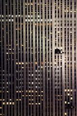 IMG_8208 copy (olasis) Tags: city nyc newyorkcity trip travel vacation newyork view empirestatebuilding empirestate observationdeck