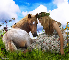 Horse Whisperer (rubyblossom.) Tags: horse field background meadow made pre whisperer challenge24 faestock rubystreasures
