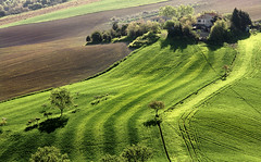Landscape: Deep Green (.Gianluca) Tags: summer italy orange holiday green home nature colors rural landscape europe hill land marche jesi collina ancona infinestyle