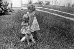 Sisters Judy and Susan Becker with their dog: Miami Beach, Florida (State Library and Archives of Florida) Tags: dog dogs sisters wire florida wirehaired terrier fox miamibeach terriers wirefoxterrier susancampbell judybecker statelibraryandarchivesofflorida