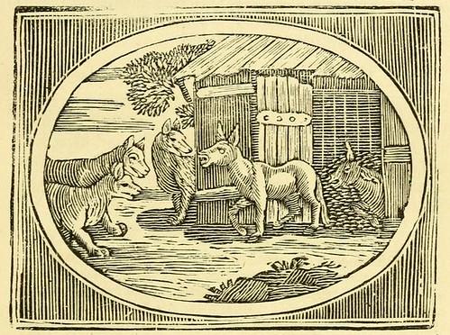 Lupi et Asinus Aegrotus