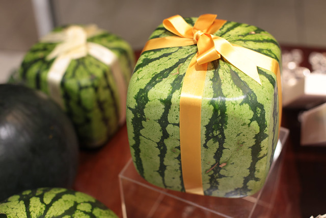 cube-shaped watermelon
