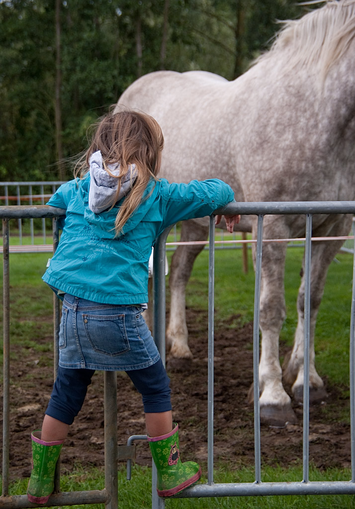 paardjes strelen, levend erfgoed