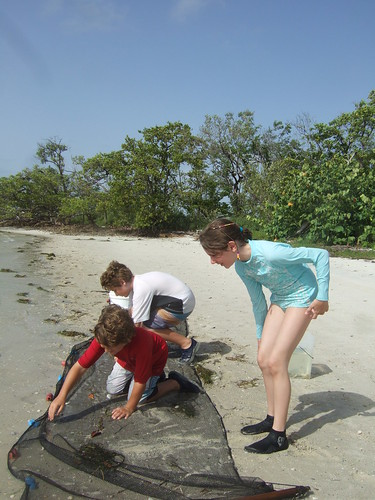 Julia, Max and Parker seining