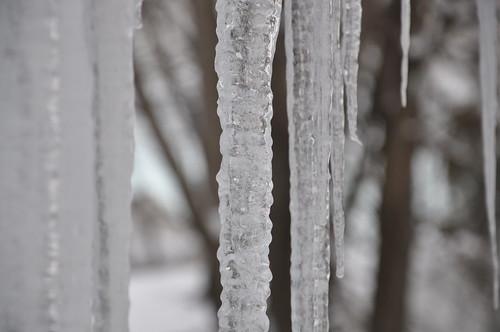 2011-01-28 - Ice 021