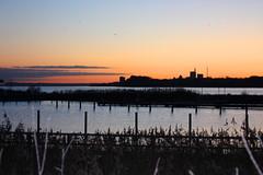Seeglerhafen 1 (Von Noorden her) Tags: sundown sonnenuntergang water wasser sea pond binnenwasser neustadt holstein boat boot boote wolken cloud clouds wolke schatten shadows night nacht abend evening sails segelboot ostsee