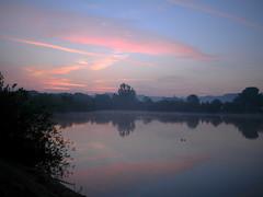 Ducks (roadscum) Tags: england hertfordshire dobbsweir glenfaba dawn light lake mist ducks windpump