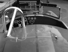 AC Cobra (rrejsa) Tags: graflex pacemakerspeedgraphic 4x5 fomapan400 rodinal 135mmoptar accobra carshow anoka minnesota