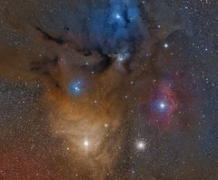 Rho Ophiuchi (Paddy Gilliland @ Image The Universe) Tags: rho rhoophiichi antares mosaic galaxy galaxies ic space nebula nebulae stars night astro astronomy astrophoto astrophotography ap narrowband cosmos texture abstract outdoor wide widefield nighttime sky dark colours science